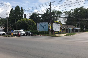 Billboard for rent in zone Muang-Surat-Thani